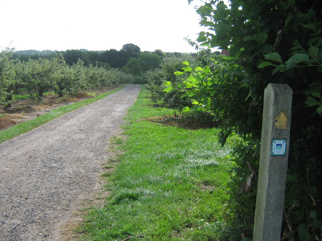 Tunbridge Wells Circular - High Weald Walk through Pippins Farm - geograph.org.uk - 1409082