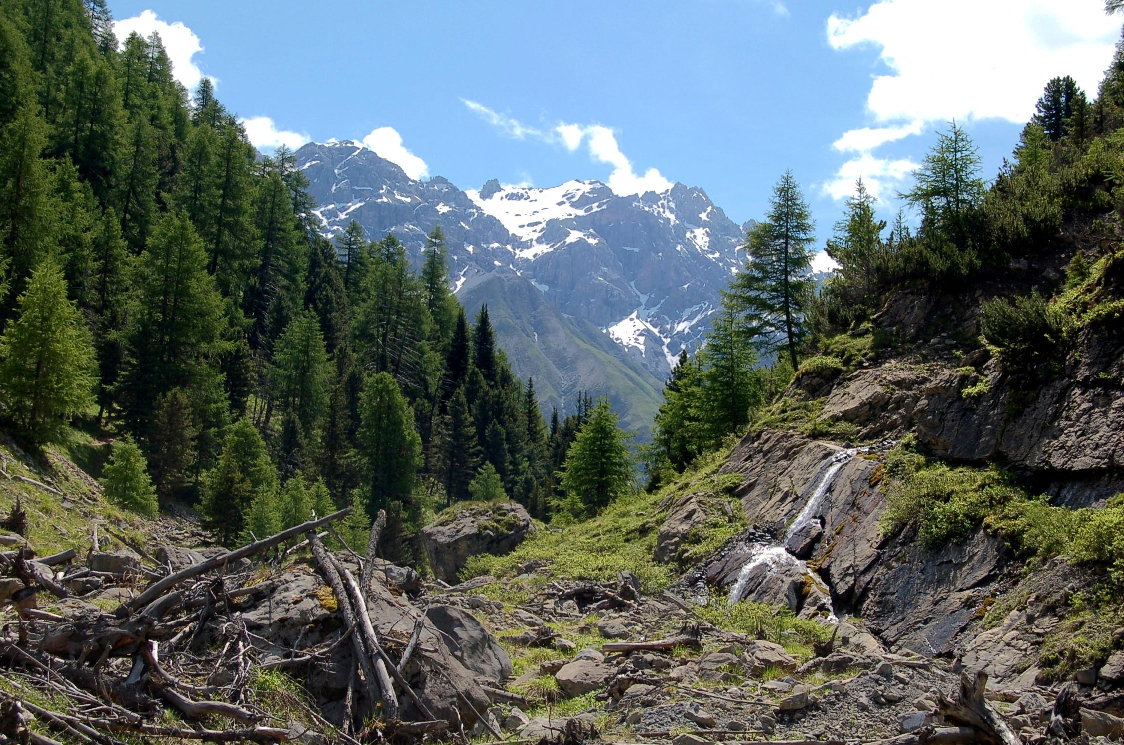 Livigno-Alperne