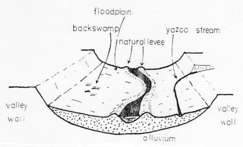 Yazoo Stream Wikipedia
