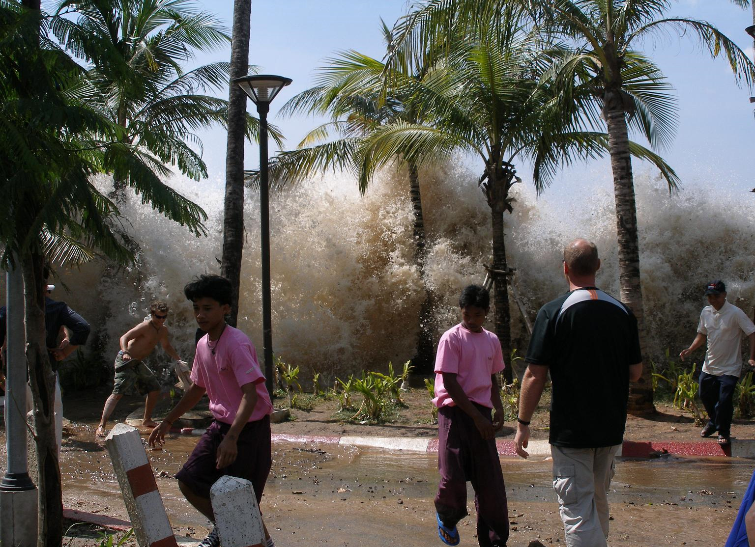 Tsunami Striking Coast