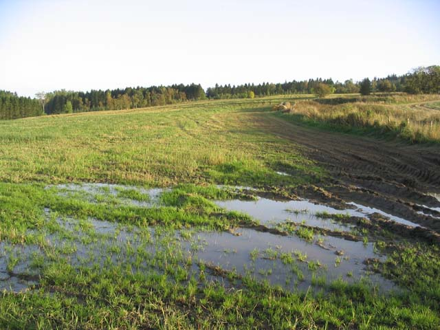 File:A waterlogged field at Hartwoodburn - geograph.org.uk - 259352.jpg