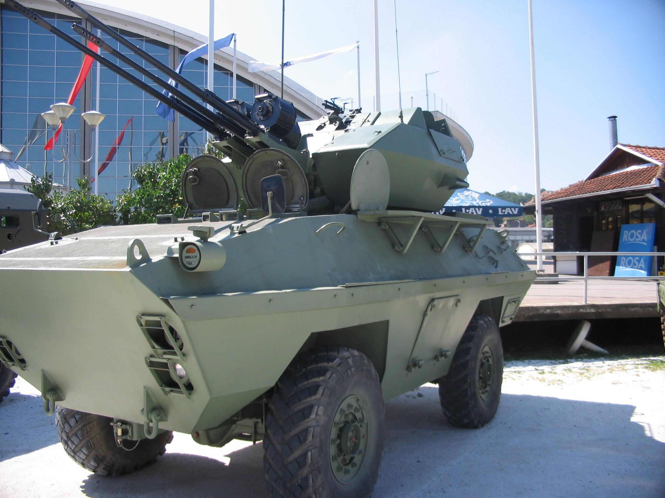 BOV-3.JPG