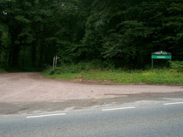 Canaston Wood - geograph.org.uk - 218722