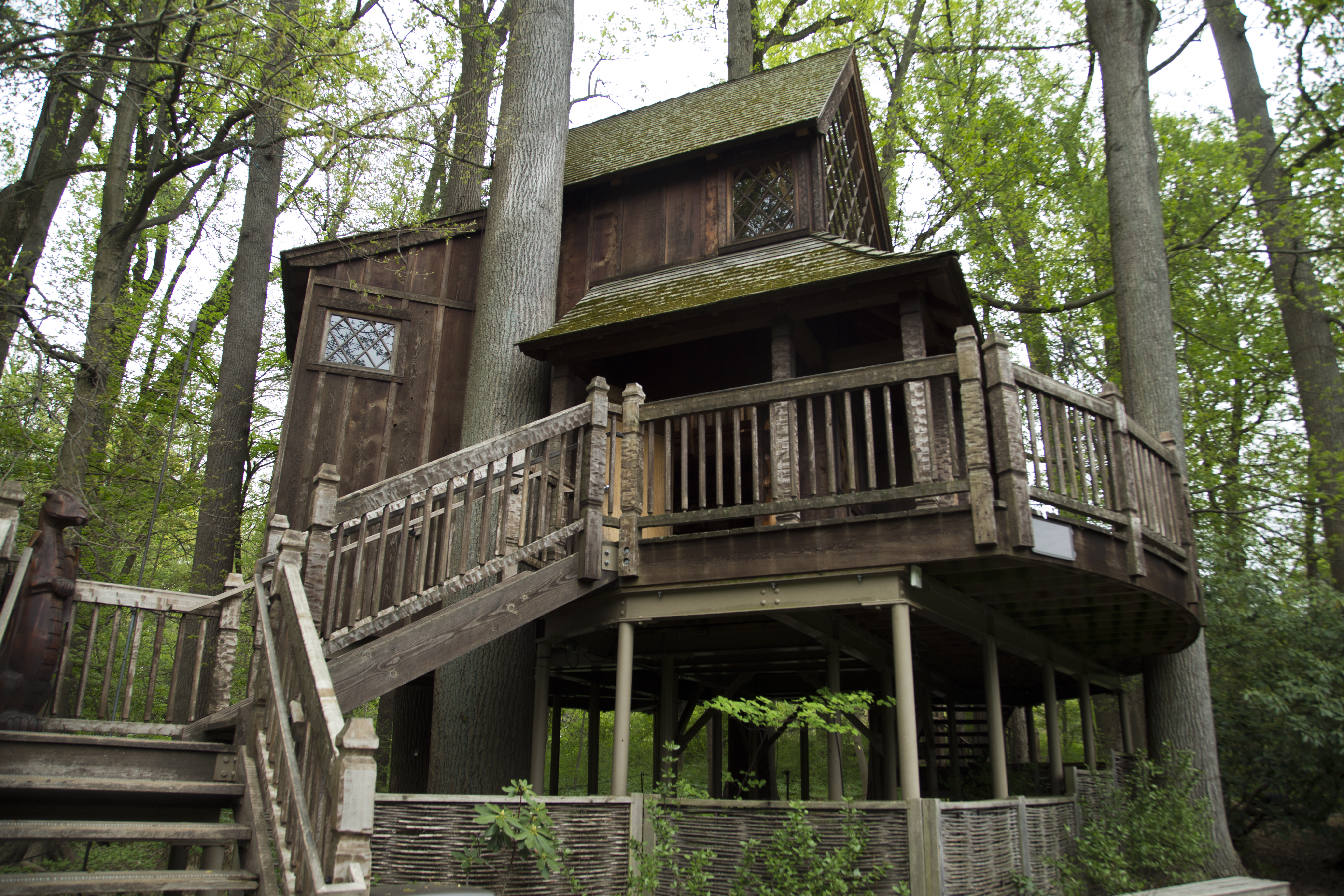 FileCanopy Cathedral treehouse.jpg & File:Canopy Cathedral treehouse.jpg - Wikimedia Commons