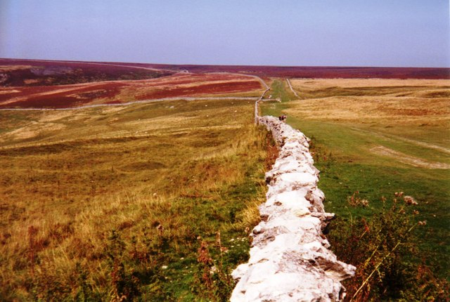 Cleveland Way on Little Moor - geograph.org.uk - 582723
