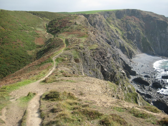 File:Coast path at Higher Sharpnose Point - geograph.org.uk - 1570182.jpg