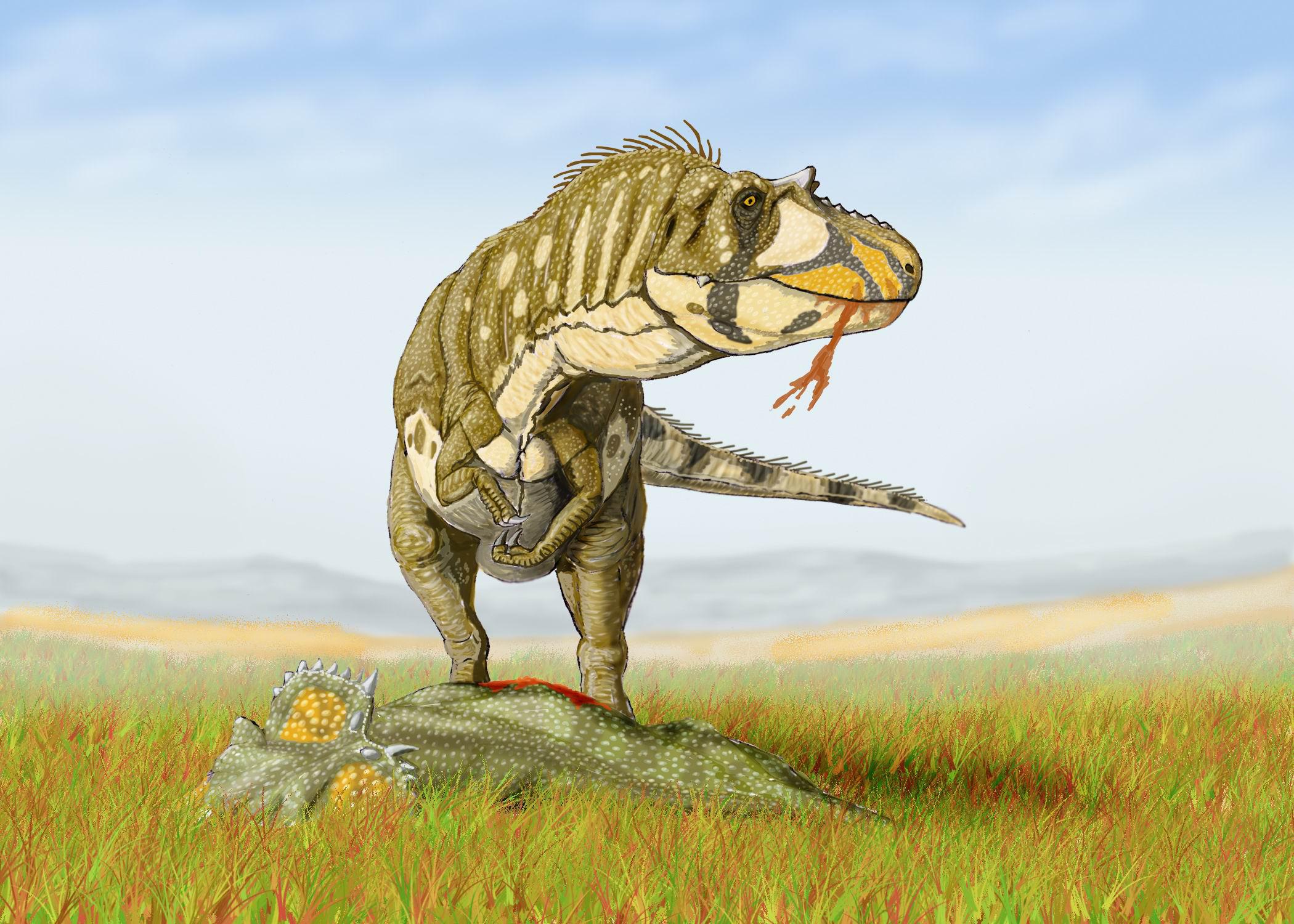 Post Your Desktop Wallpaper!  Daspletosaurus_torDB