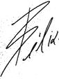 Firma de João Félix.png