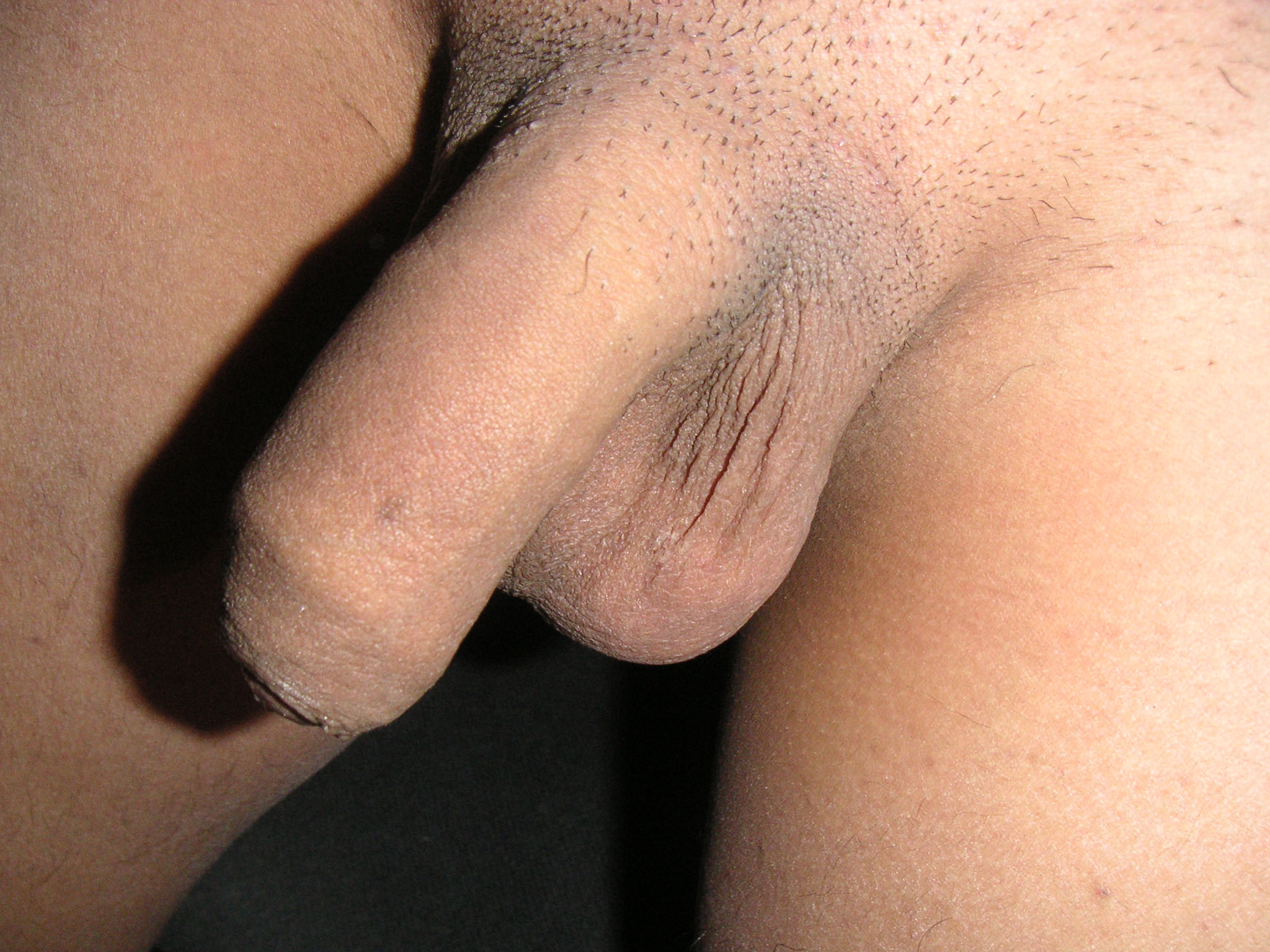 Image girl touch boy penis