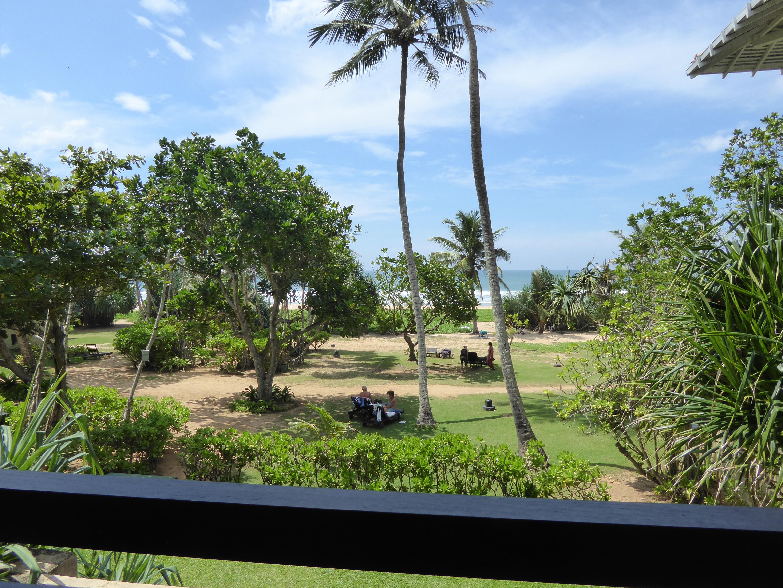 File:Hotel garden by the beach Sri Lanka Photo214.jpg - Wikimedia ...