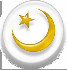Vaizdas:IslamSymbol.PNG
