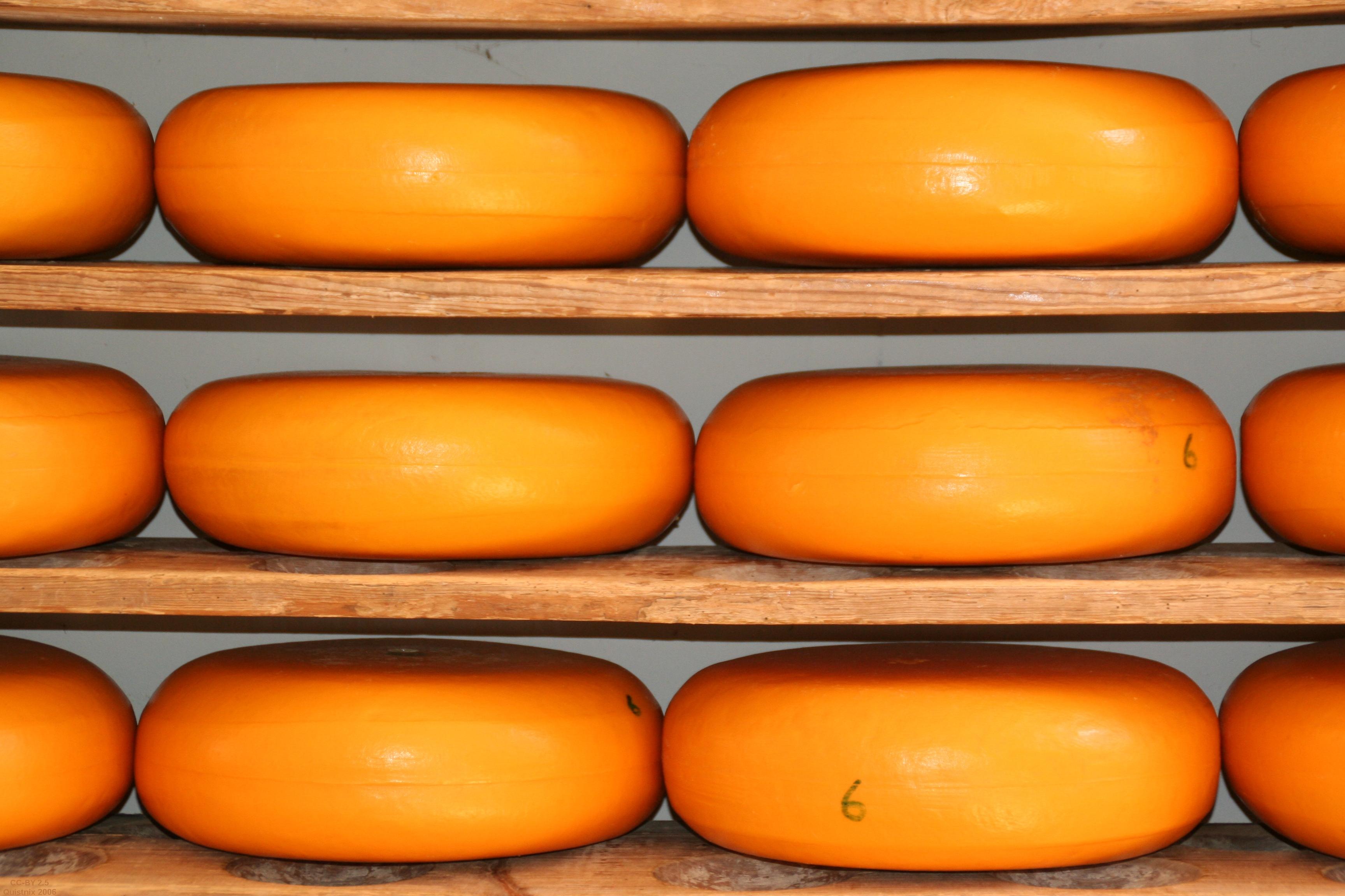 Kaas op planken.jpg