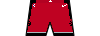 Kit shorts torontoraptors icon.png