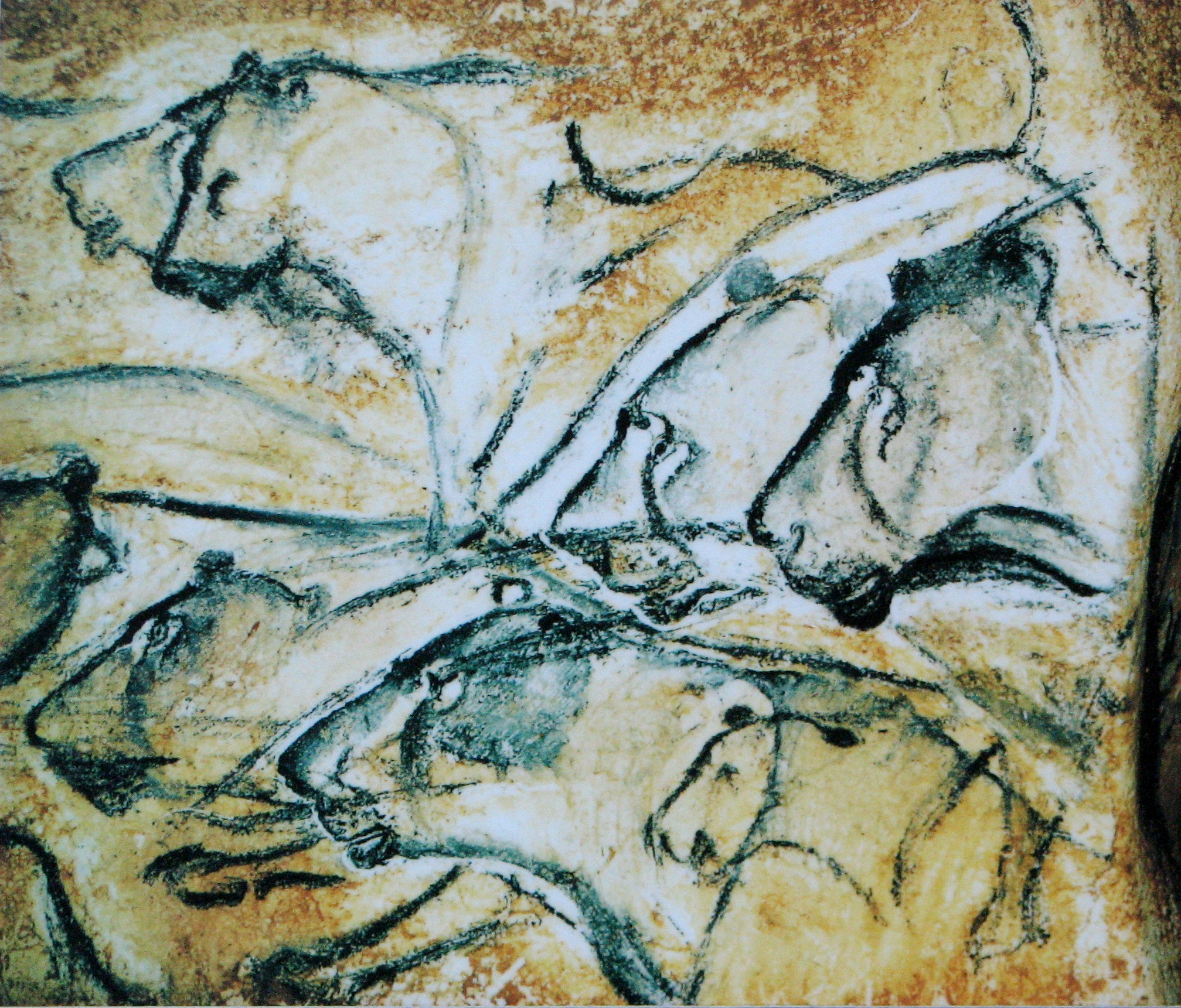 Why France is the land where the sun never setteles - Page 2 Lions_painting%2C_Chauvet_Cave_%28museum_replica%29