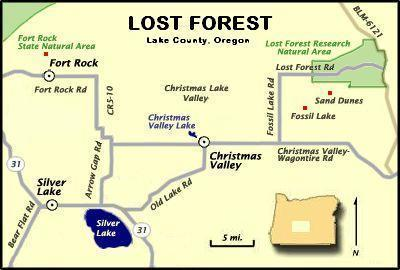 File:Lost Forest Christmas Lake Valley map.   Wikimedia Commons