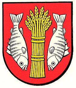 Allgemein Seite 75 FC Rorschach-Goldach 17