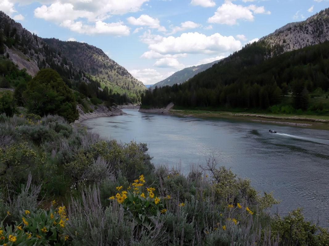 snake river canyon wyoming wikipedia