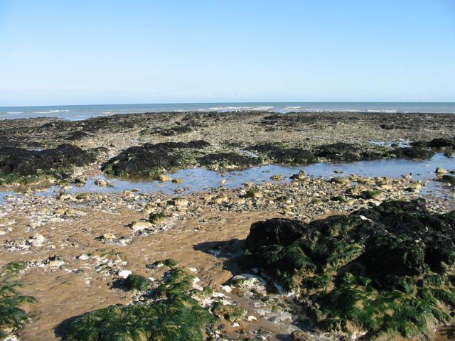 The shoreline at Botany Bay - geograph.org.uk - 1031300
