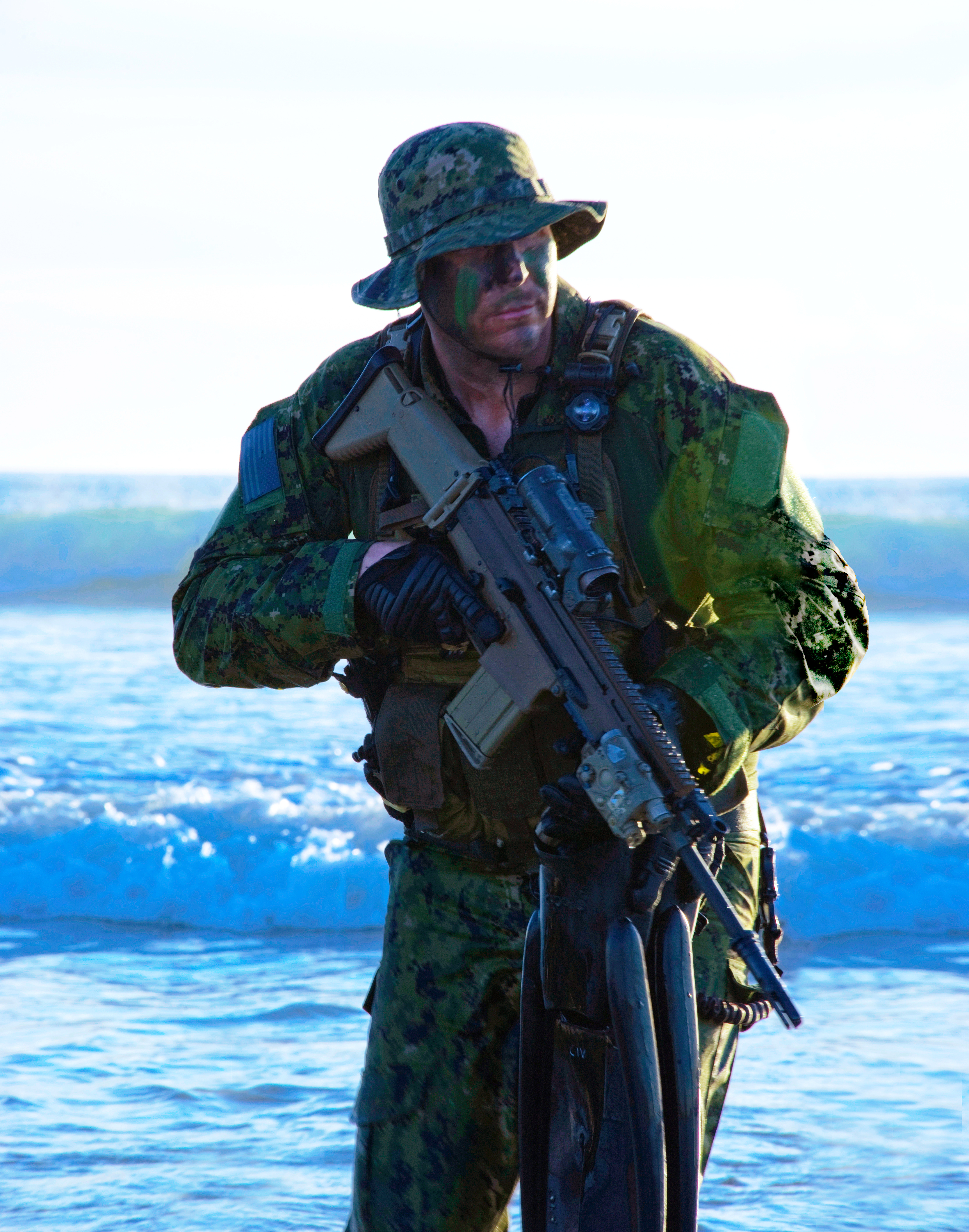 united states navy seals and beowulf Here you can download six season 1 tv show  or in other words fur seals of the us navy and is  and performed by the united states in.