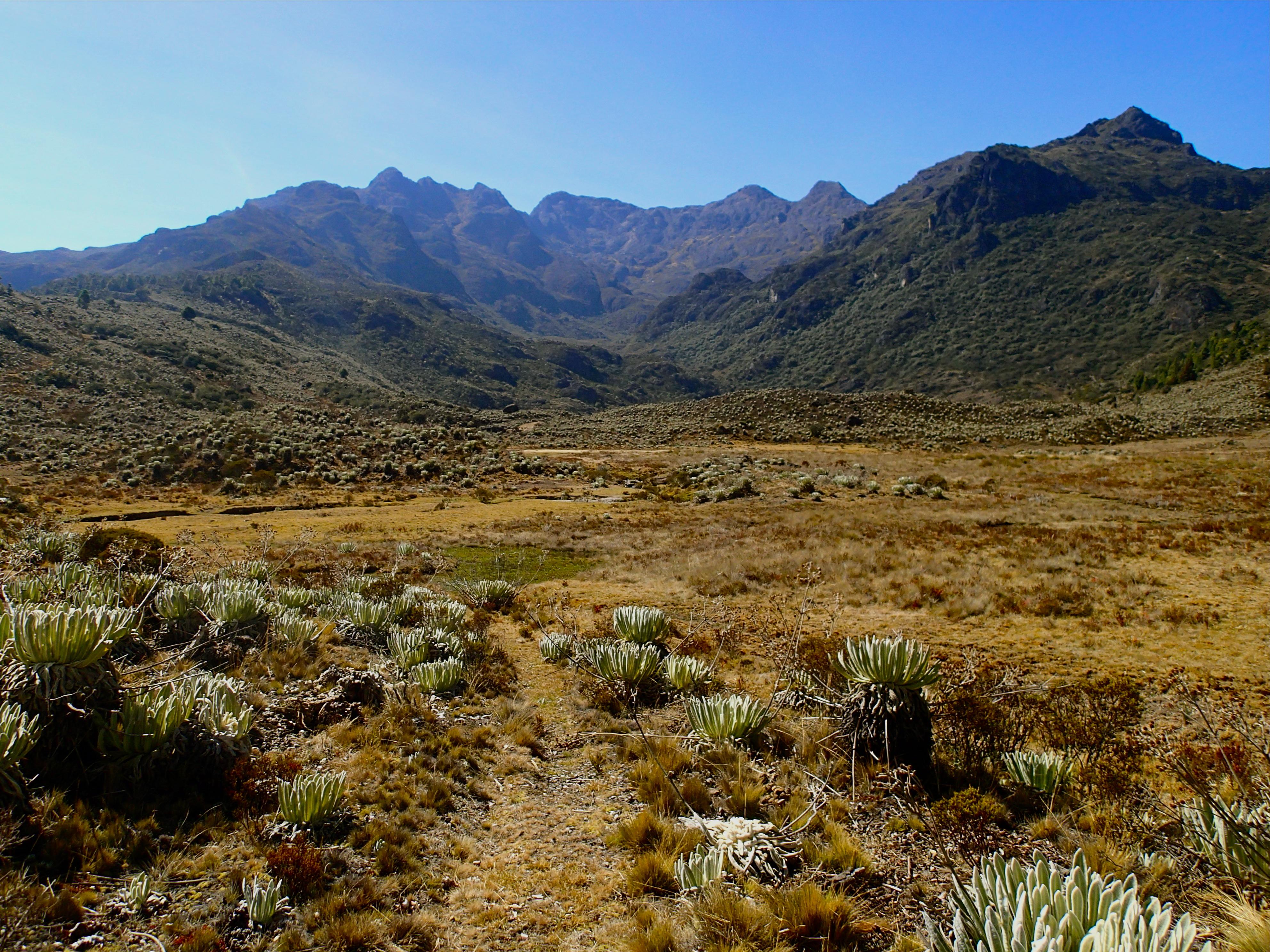Resultado de imagen para Sierra de Santo Domingo