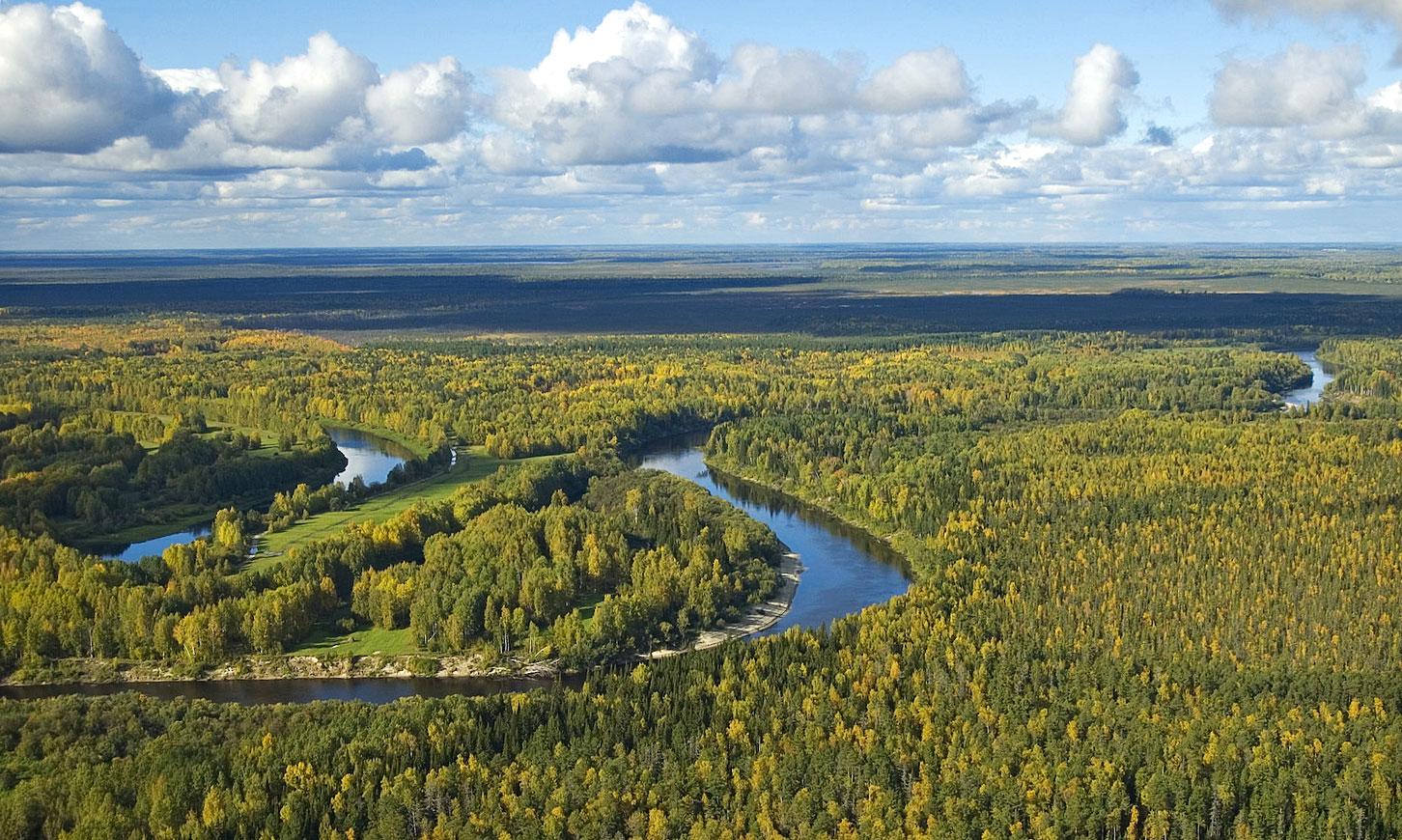 Uno de los afluentes del río por la izquierda del Obi: el Vasiugán.