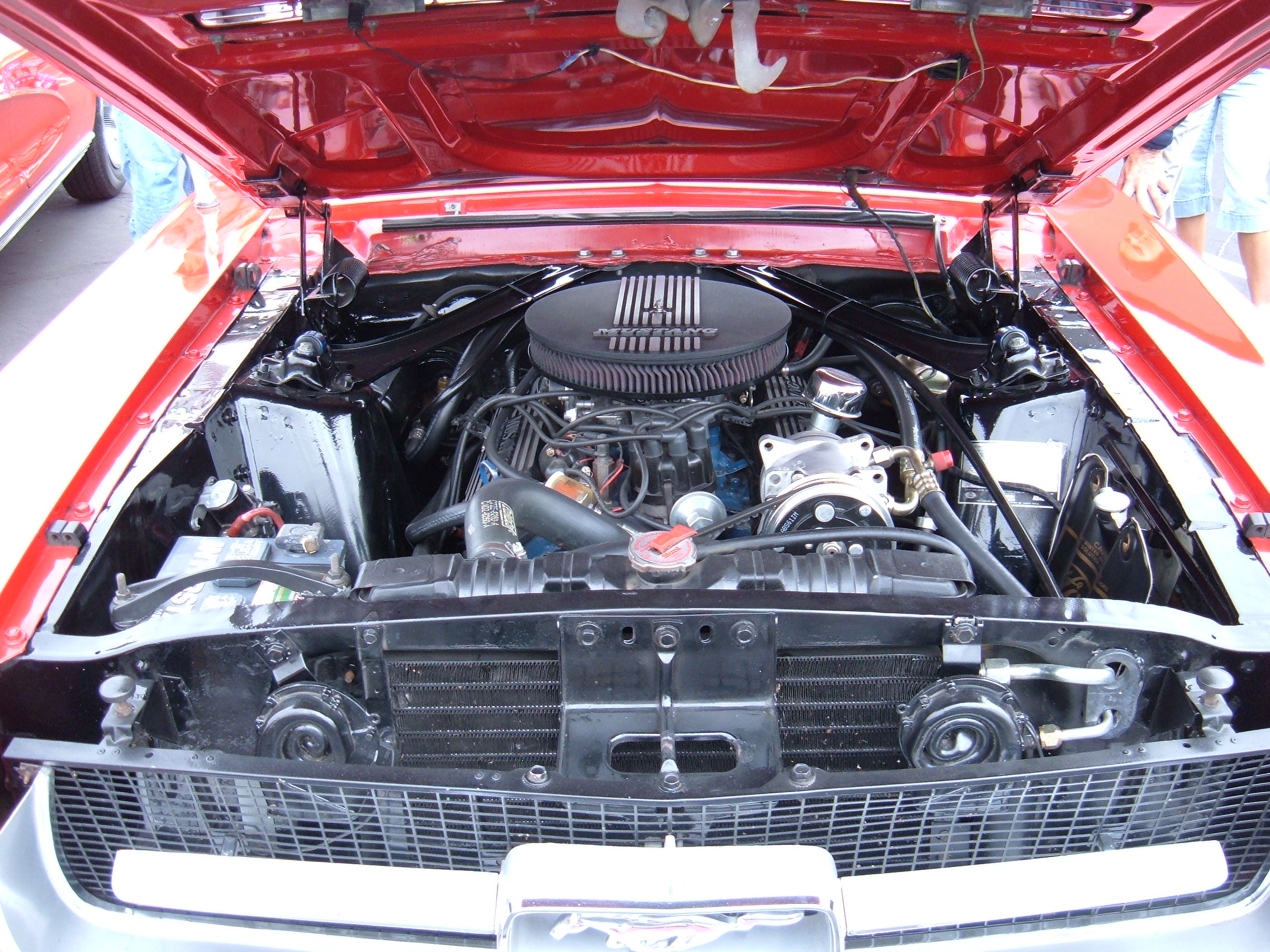 File 1967 red ford mustang coupe engine 1 jpg wikimedia for Ford mustang motor sizes