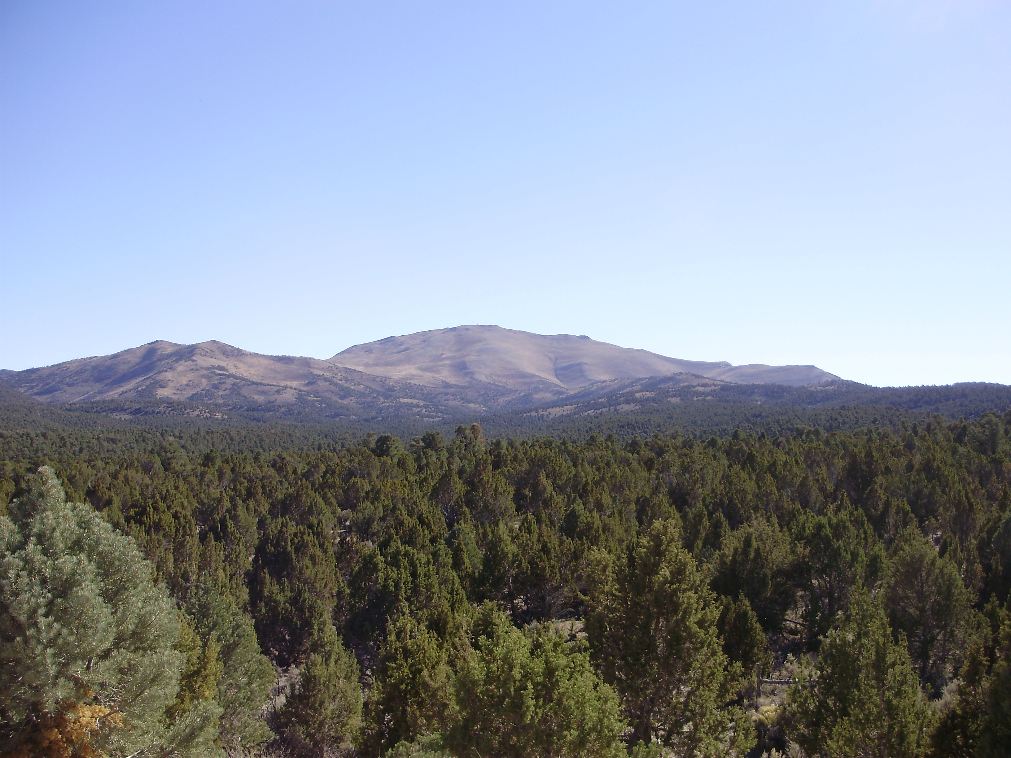 Wood Mountain Elevation : The eastern woodlands on emaze