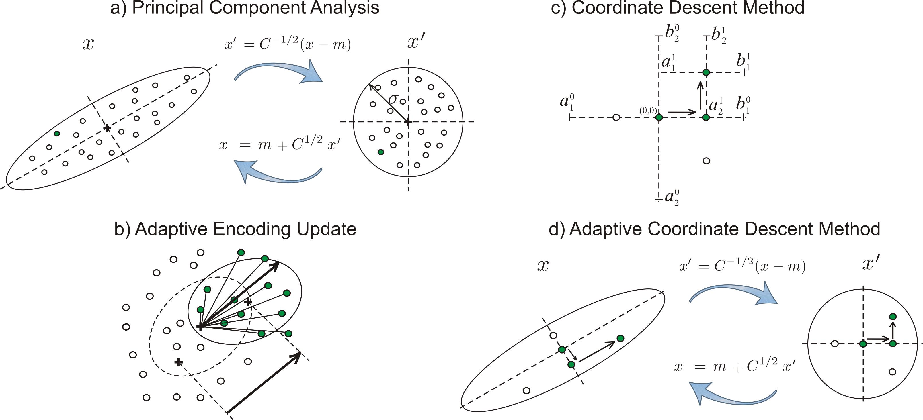 File:Adaptive Coordinate Descent illustration.png