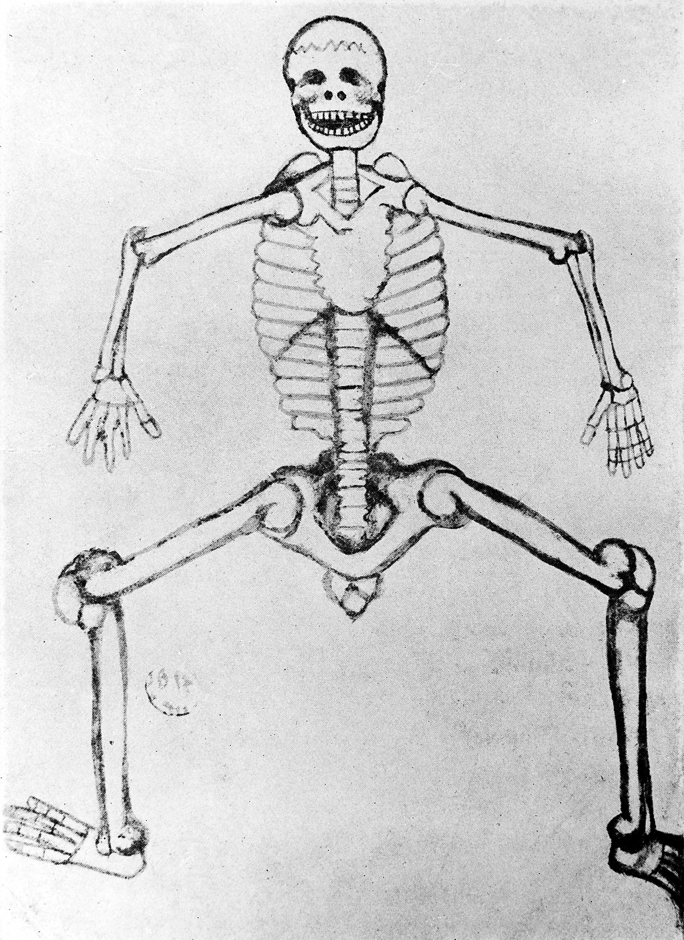 file skeleton 14th century wellcome m0000410 jpg wikimedia commons rh commons wikimedia org Arm Skeleton Diagram Wrist Bones Diagram