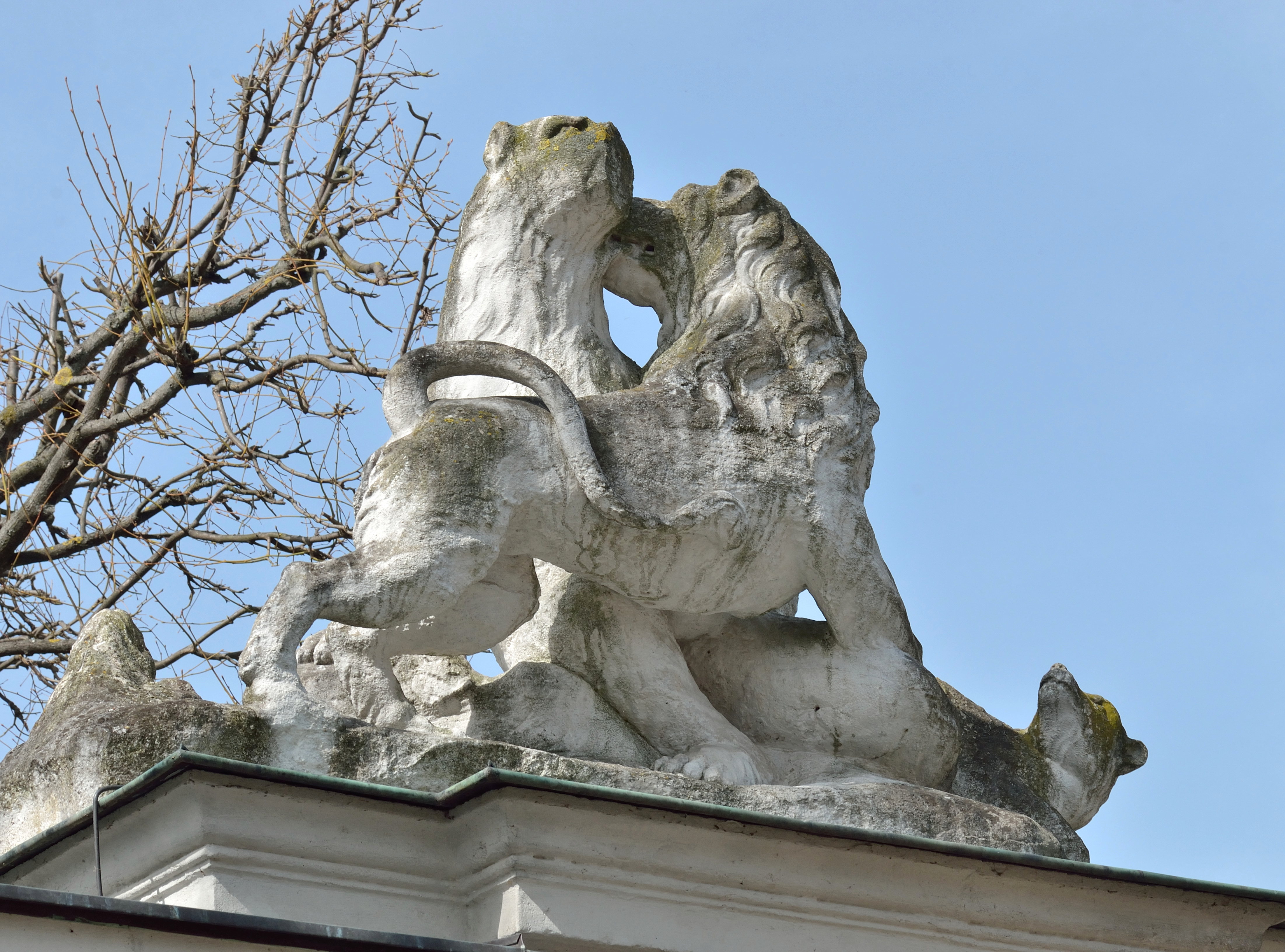 File Animal Sculpture On Tiergarten Wall Schönbrunn 05 Jpg