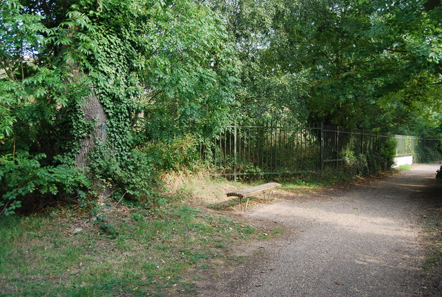 Bench by the Medway Valley Walk - geograph.org.uk - 1512645