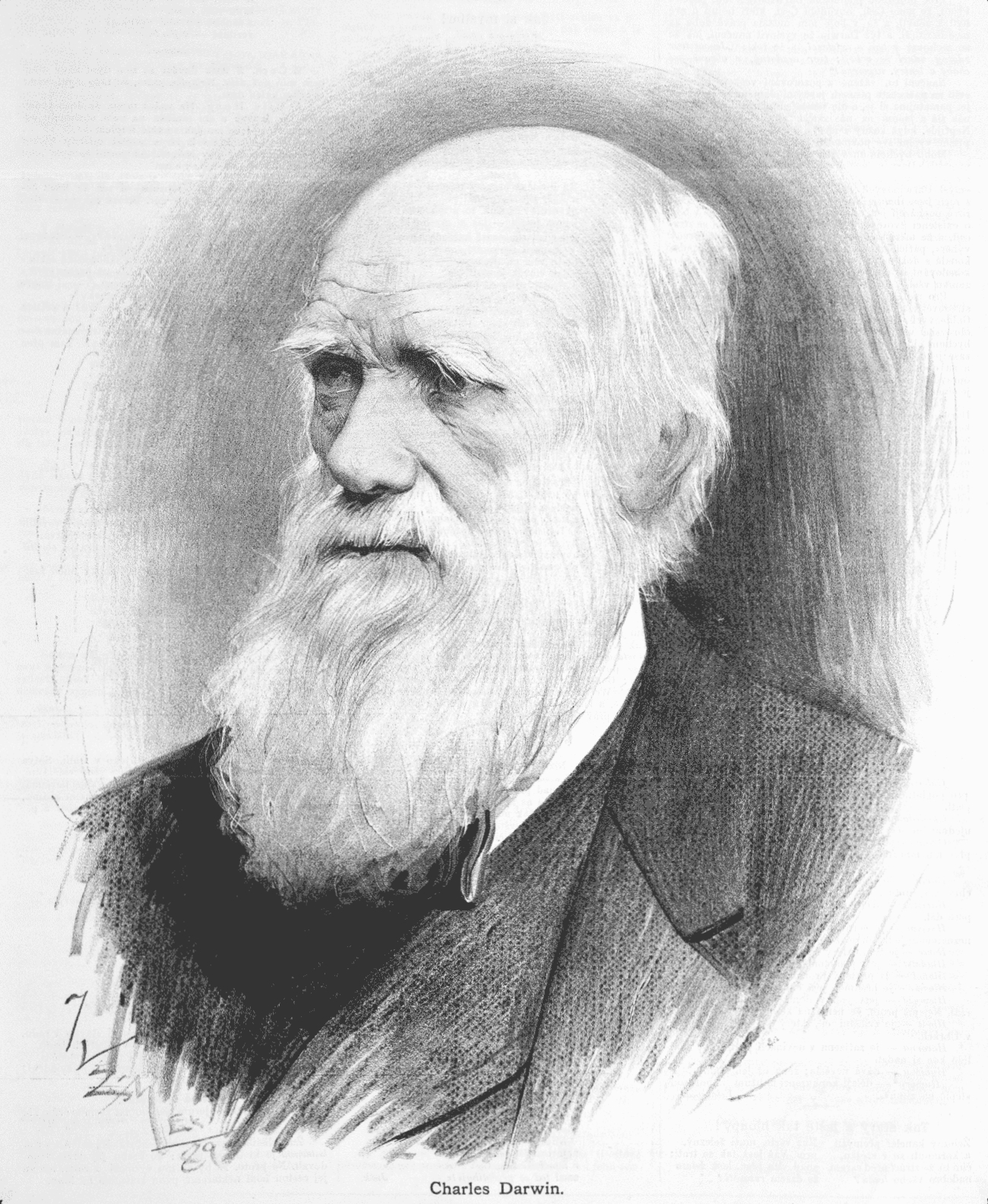 http://upload.wikimedia.org/wikipedia/commons/2/2e/Charles_Darwin_-_Jan_Vil%C3%ADmek.jpg