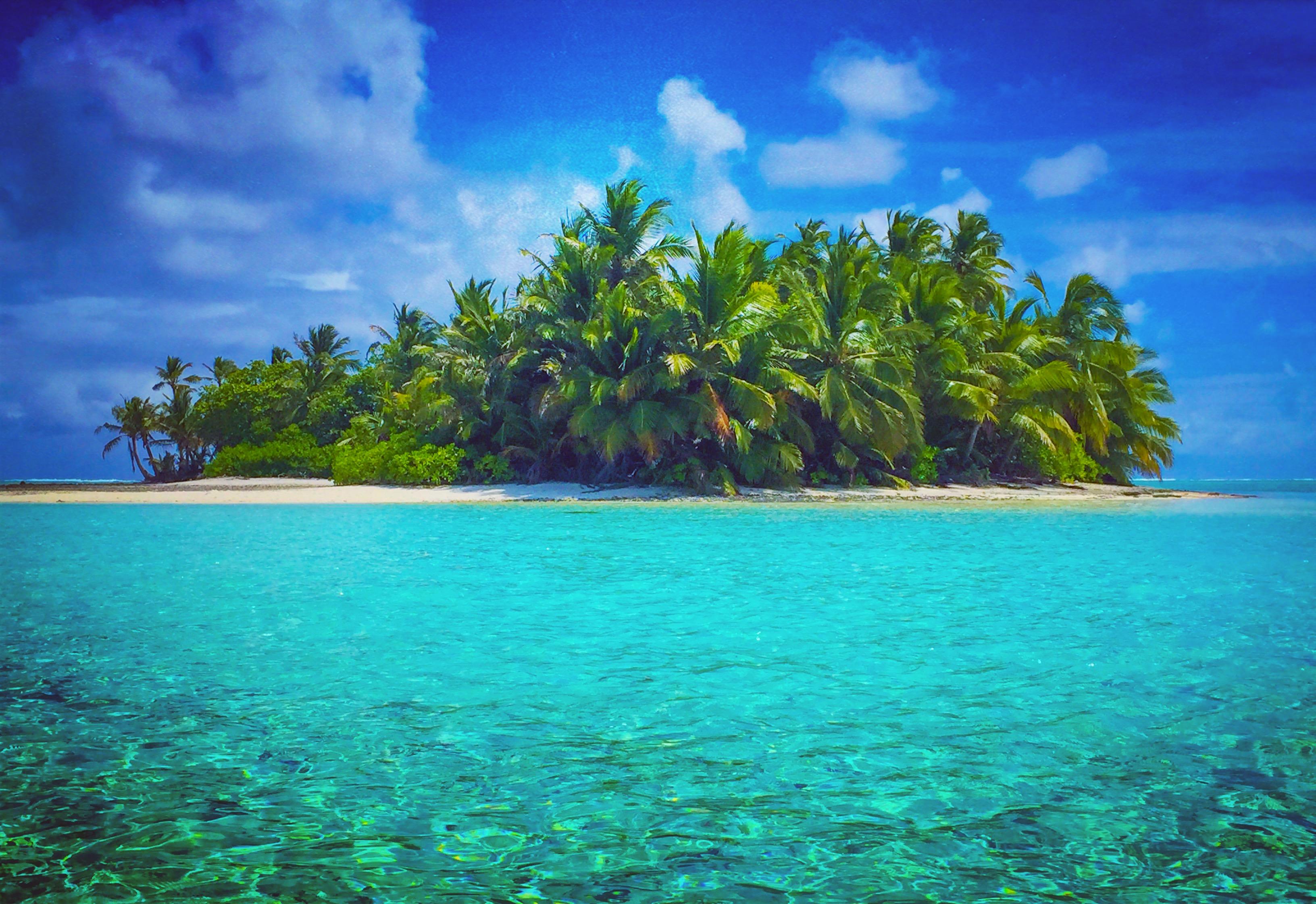 когда кокосовые килинг острова фото своей бьюти-рутине