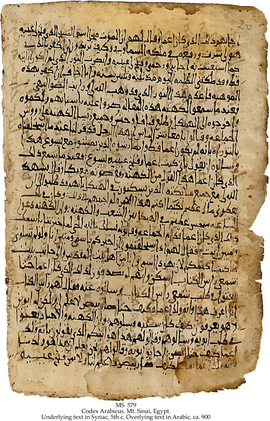 Codex Arabicus Bible Translations Into Arabic Wikipedia