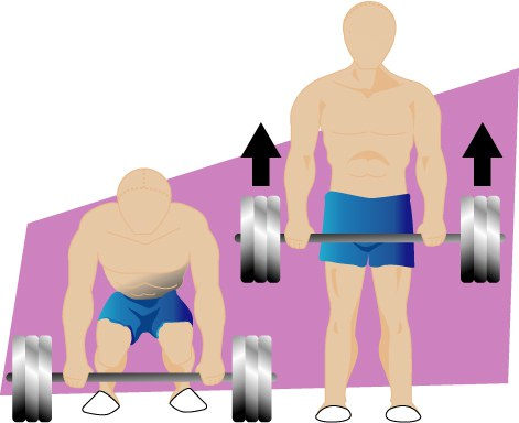 Deadlift Illustration