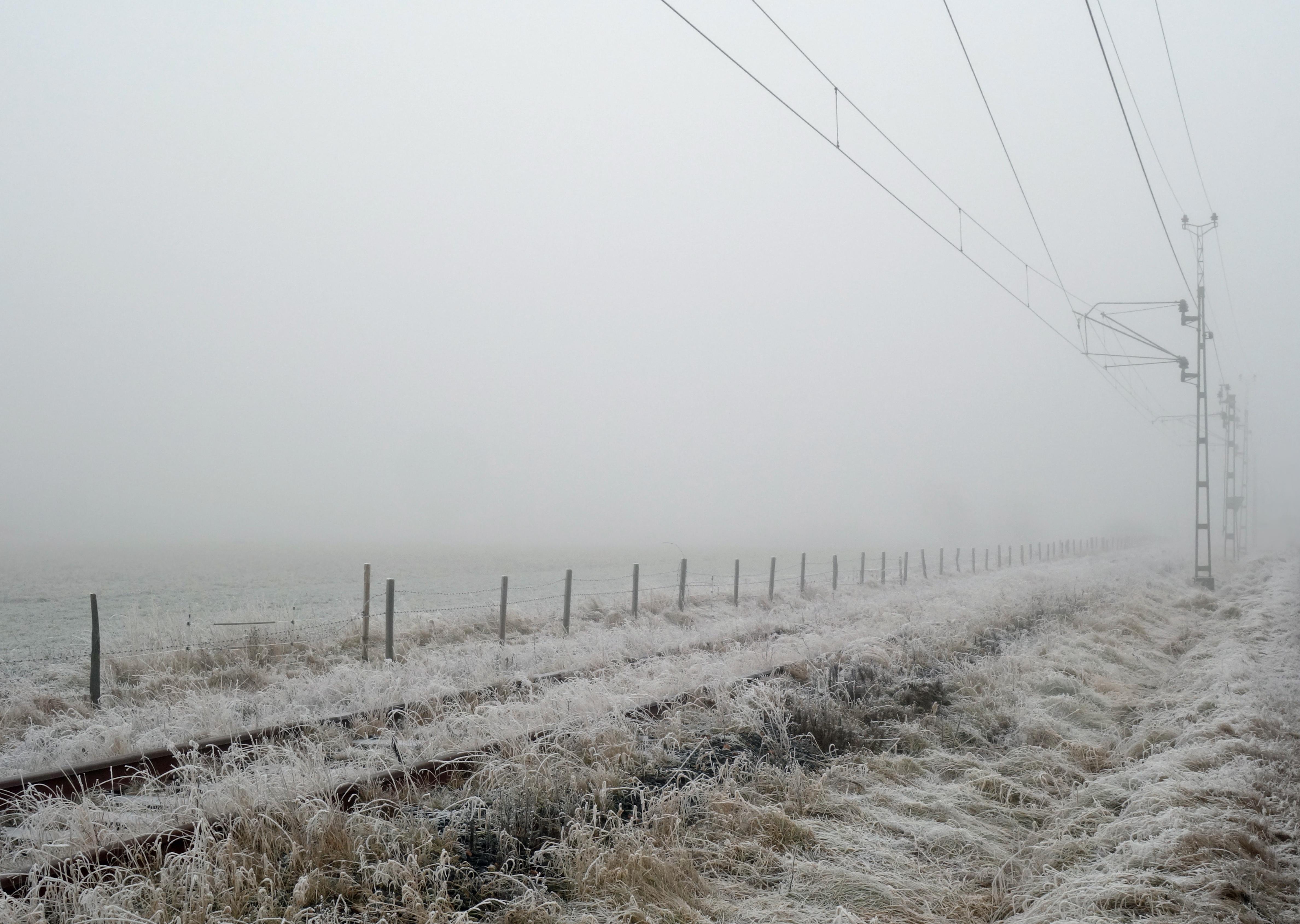 Frost_fog.jpg