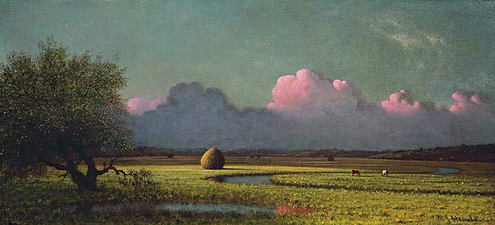 Sunlight and Shadow: The Newbury Marshes, 1871-75