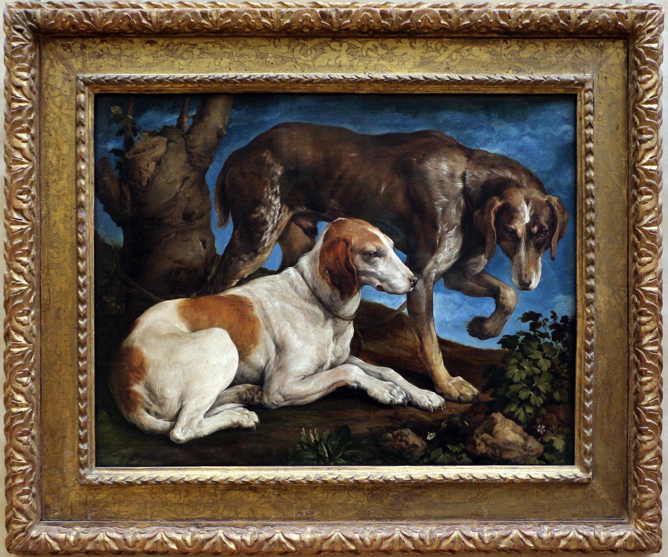 Filejacopo Bassano Due Cani Da Caccia Presso Un Ceppo 1548jpg