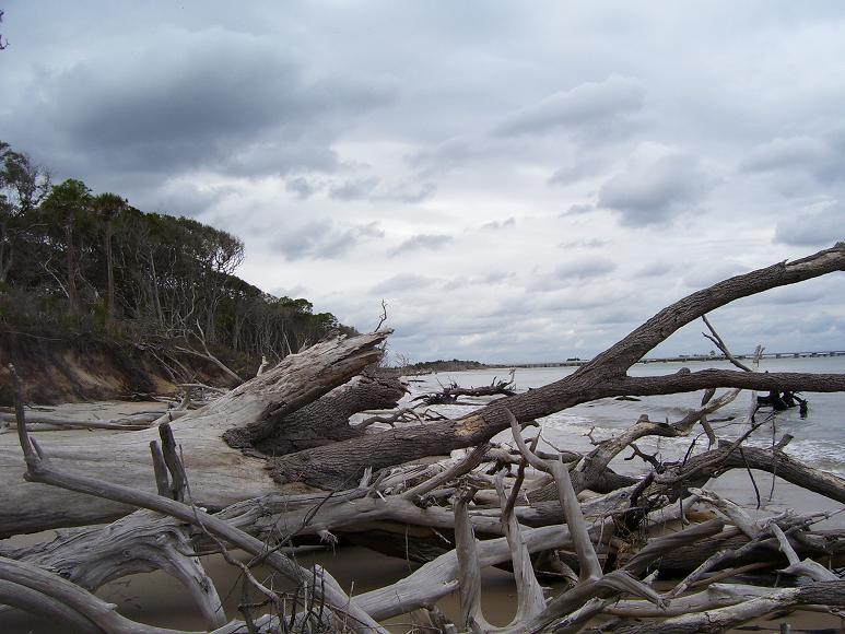Little Talbot Island State Park Campng