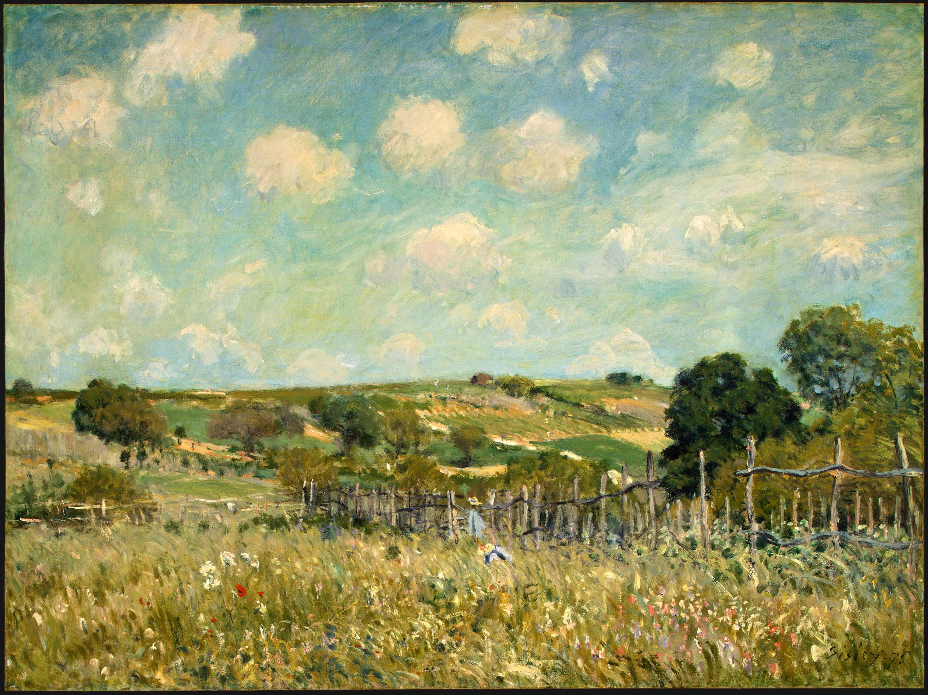 File meadow alfred sisley wikimedia commons for The meado