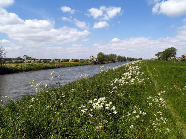 New River Ancholme - geograph.org.uk - 178012