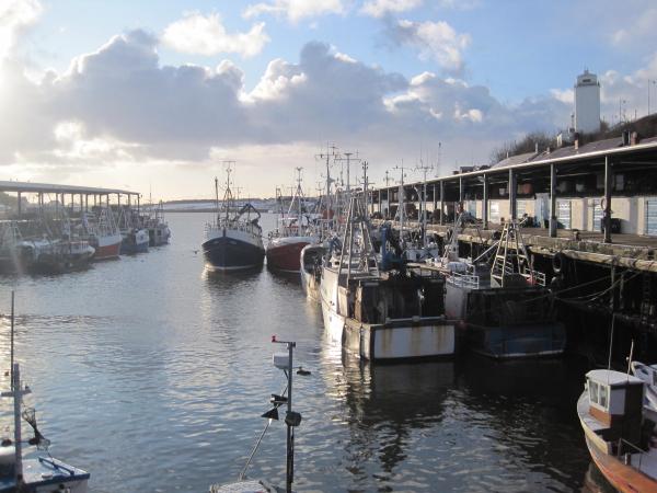 North Shields Wikipedia