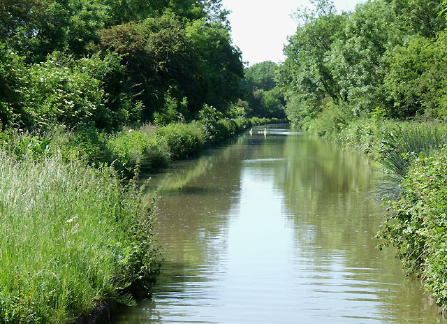Oxford Canal near Rugby, Warwickshire - geograph.org.uk - 988913