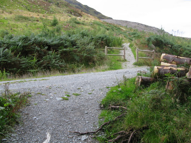 Path on the lower slopes of Ben Ledi - geograph.org.uk - 955971