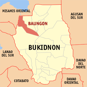 Map of Bukidnon showing the location of Baungon