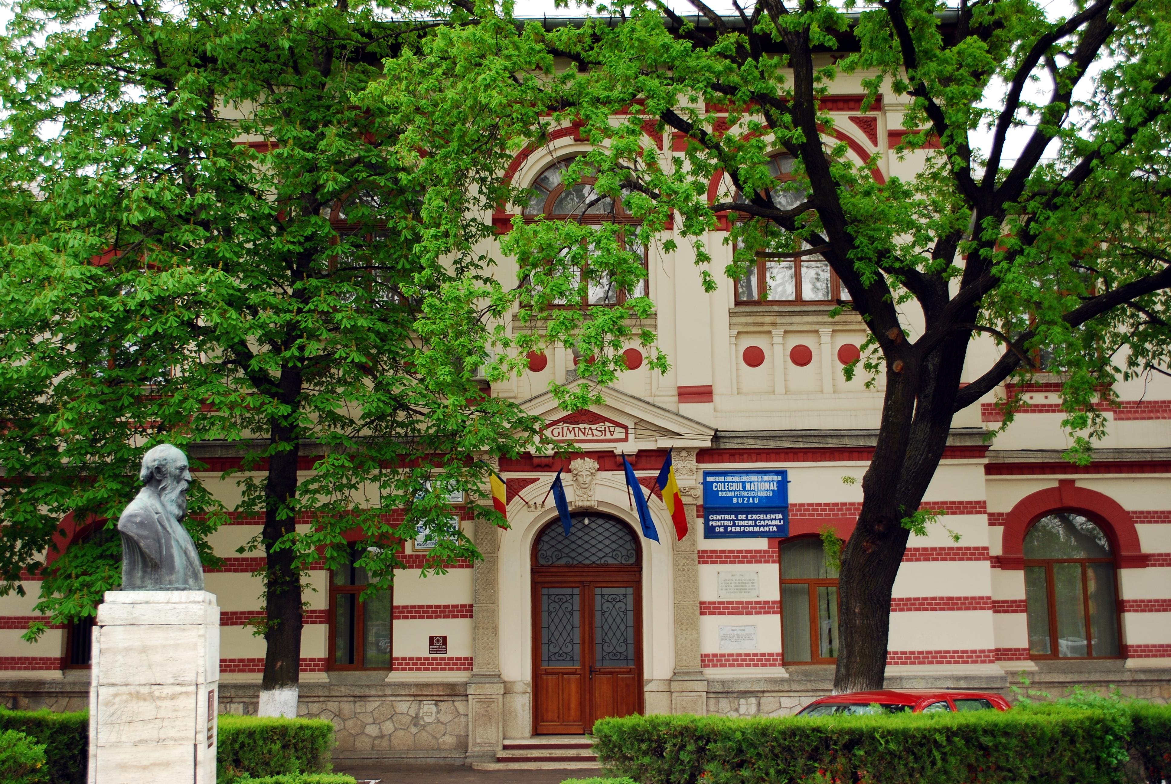 Fişier:RO BZ Hasdeu entrance.jpg