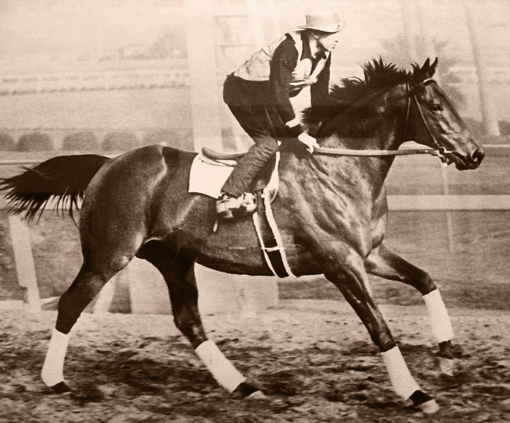 Seabiscuit Wikipedia