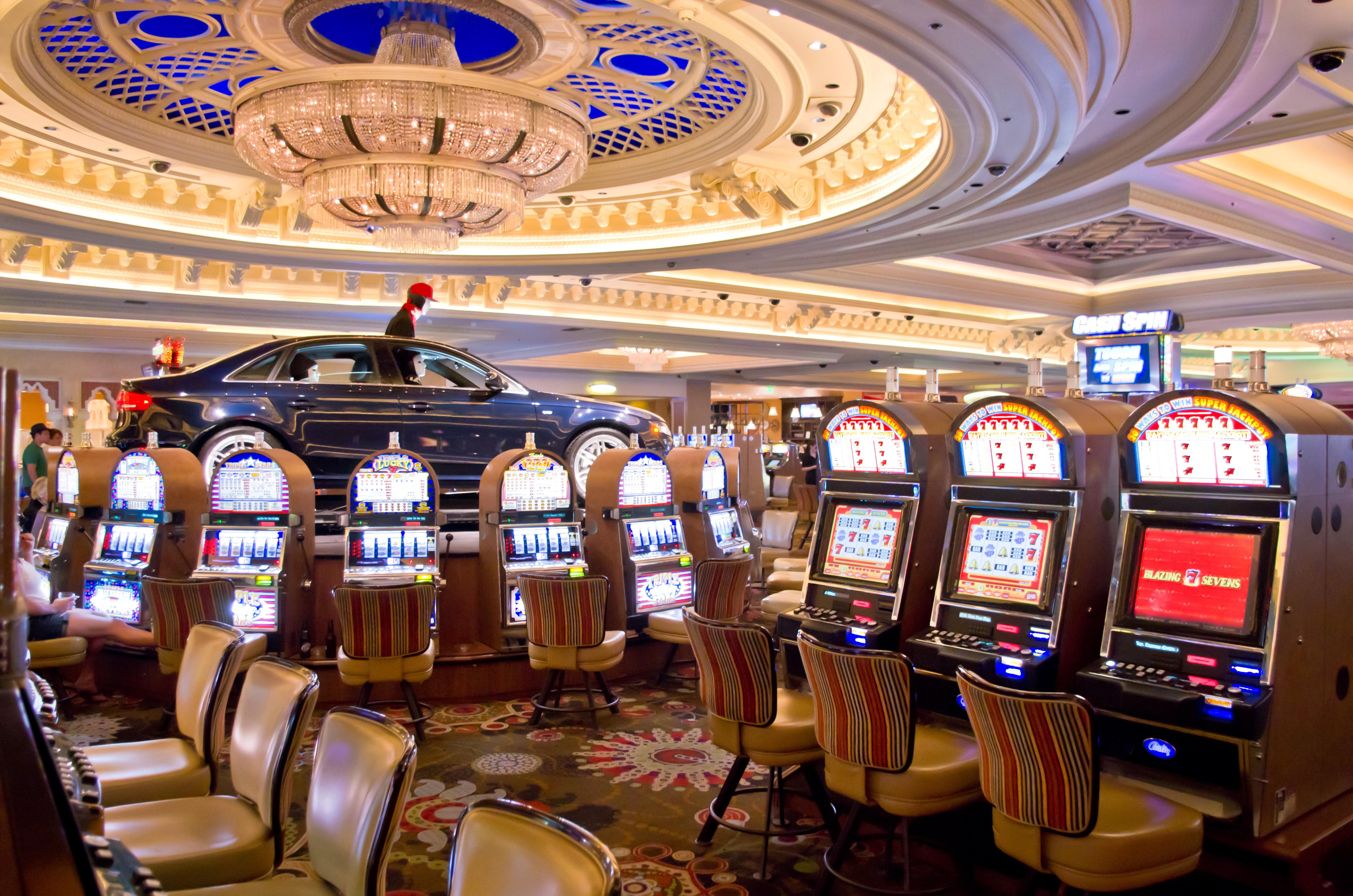 bingo casino slot machines