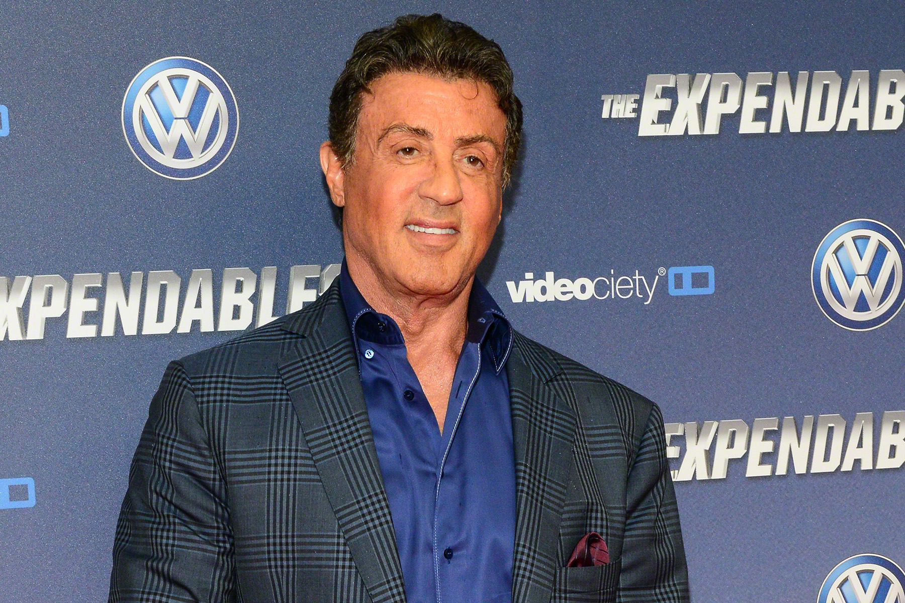 Image Result For Sylvester Stallone Wikipedia