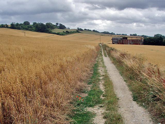 The Pilgrim's Way, England
